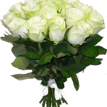 White roses 40 cm (variable quantity of flowers)